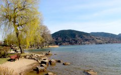 Seeufer in Bad Wiessee